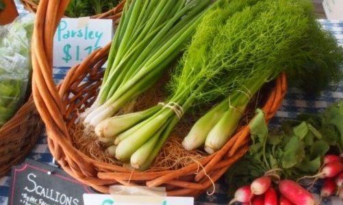 Westchester's Farmers Markets